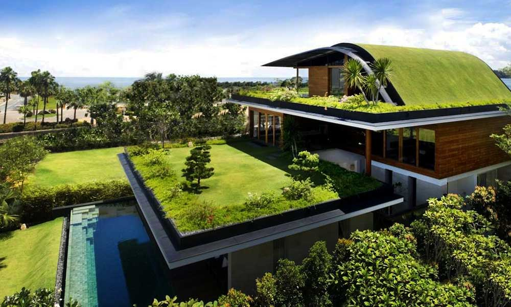 green-roof-top