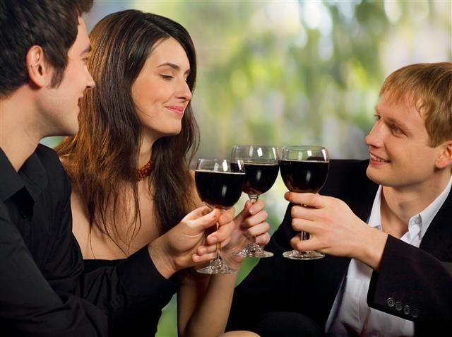 group-drinking-wine-Small