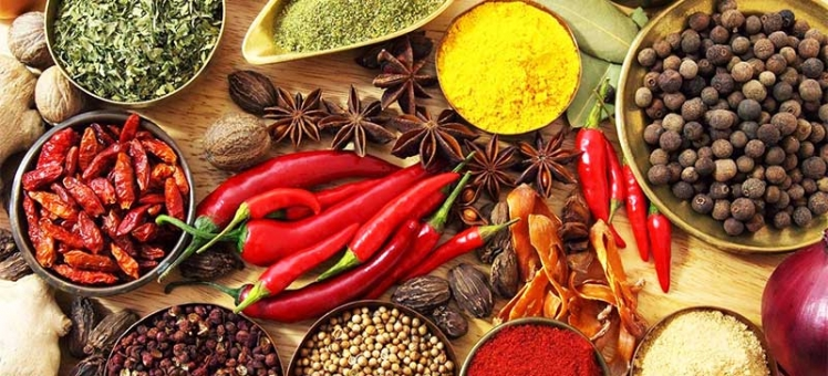 kerala-land-of-spice