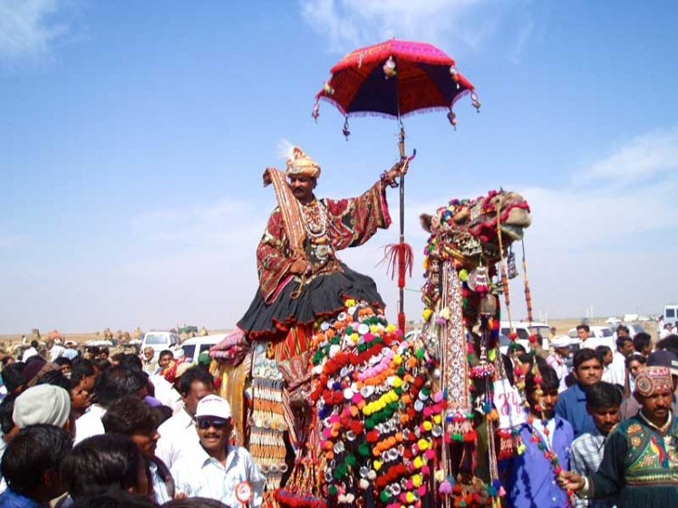 camel-ride-at-rann-utsav