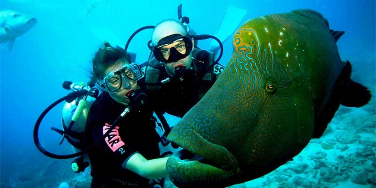 scuba-diving-with-your-instructor