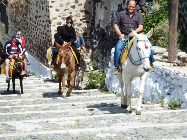 donkey-ride-in-fira