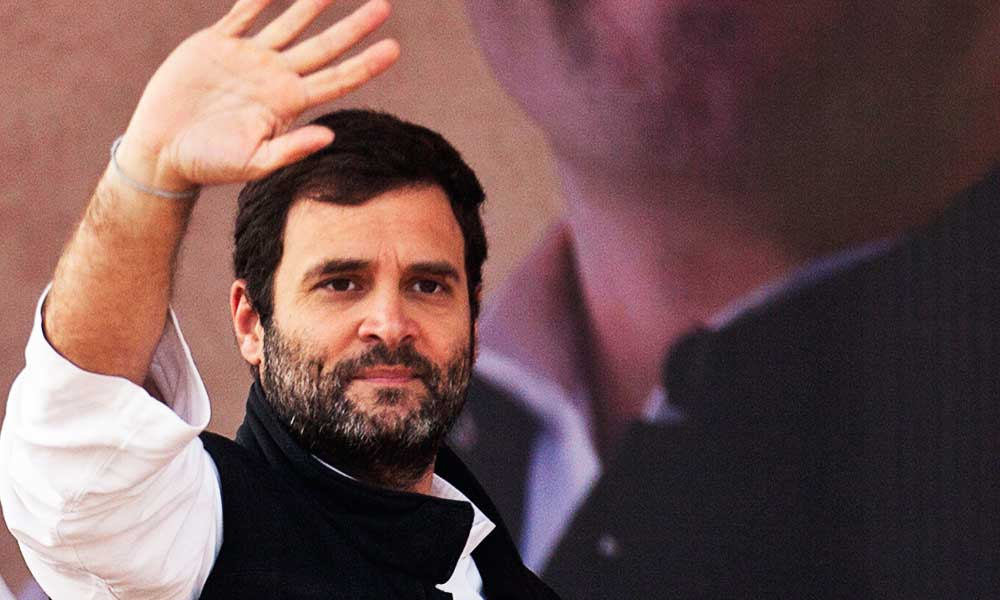 rahul-gandhi-is-back