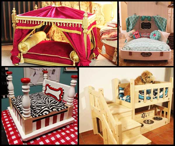 beds-for-pets