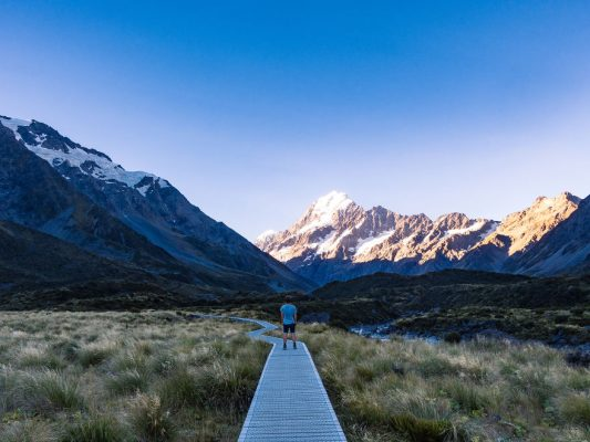 Beauty Of New Zealand