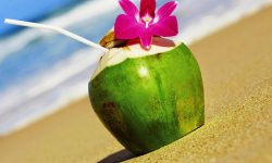 5 Super Benefits Of Coconut Water That You Should Read To BELIEVE!