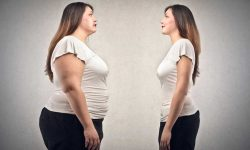 Working For Weight Loss? Wait Gut Bacteria Can Help !