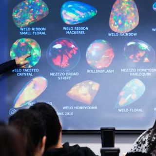 Career in Gemology