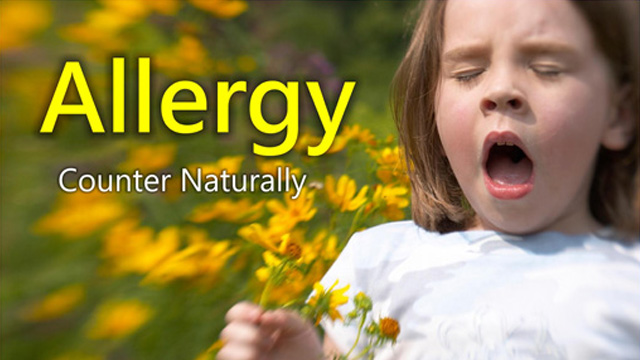World Allergy Awareness Day - October  16